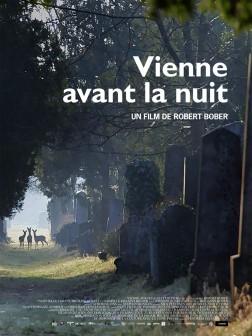 Vienne avant la nuit (2016)
